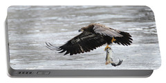 An Eagles Catch 10 Portable Battery Charger by Brook Burling