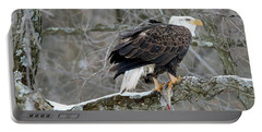 An Eagles Catch Portable Battery Charger by Brook Burling
