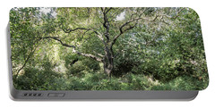 Portable Battery Charger featuring the photograph An Old One In The Forest by Arik Baltinester
