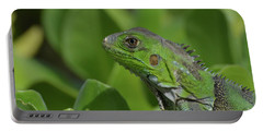 An Up Close Look At A Green Iguana Portable Battery Charger by DejaVu Designs