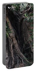 Ancient Old Olive Tree Spain Portable Battery Charger by Colette V Hera Guggenheim