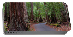 Ancient Redwoods Portable Battery Charger