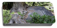 Ancient Tree On A Rock Portable Battery Charger