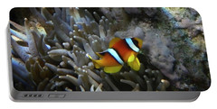 Anemonefish 2017 Portable Battery Charger