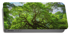 Angel Oak Tree In South Carolina  Portable Battery Charger