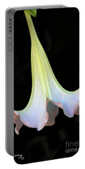 Angel Trumpet Portable Battery Charger by Mariarosa Rockefeller