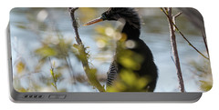 Anhinga 3 March 2018 Portable Battery Charger