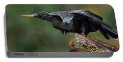 Anhinga Anhinga Anhinga, Costa Rica Portable Battery Charger by Panoramic Images