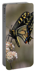 Anise Swallowtail Portable Battery Charger