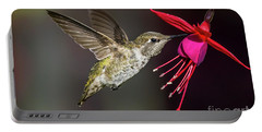 Anna Immature Hummingbird Portable Battery Charger