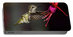 Anna Juvenile Hummingbird Portable Battery Charger