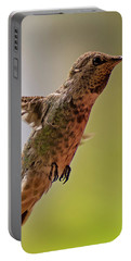 Portable Battery Charger featuring the photograph Anna's Hummingbird H24 by Mark Myhaver
