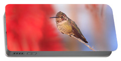 Portable Battery Charger featuring the photograph Annas Hummingbird by John F Tsumas