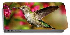 Anna's Hummingbird Portable Battery Charger
