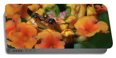 Ant On Plant  Portable Battery Charger by Richard Rizzo