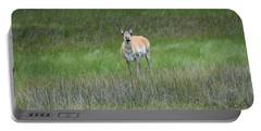 Prong Horned Antelope Lake John Swa Co Portable Battery Charger