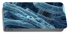 Anthrax Bacteria Sem Portable Battery Charger by Eye Of Science and Photo Researchers
