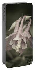 Antique Columbine - D010096 Portable Battery Charger by Daniel Dempster