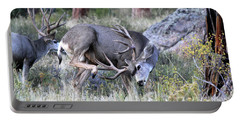 Portable Battery Charger featuring the photograph Antler Scratch by Shane Bechler