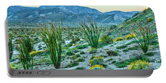 Anza Borrego Twillight Portable Battery Charger