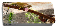 Appalachian Anoles Portable Battery Charger