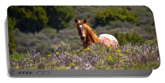 Appaloosa Mustang Horse Portable Battery Charger