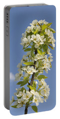 Apple Blossom In Spring Portable Battery Charger