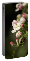 Apple Flower And Buds Portable Battery Charger