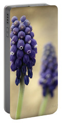 Portable Battery Charger featuring the photograph April Indigo by Chris Berry
