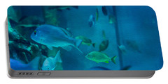Aquarium View Portable Battery Charger