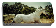 Arabian Horse Running In The Field Portable Battery Charger
