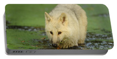 Arctic Wolf Portable Battery Charger