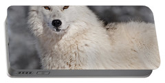 Arctic Wolf... Portable Battery Charger