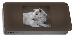 Arctic Wolf, San Diego Zoo Portable Battery Charger