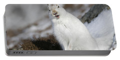 Are You Kidding? - Mountain Hare #14 Portable Battery Charger
