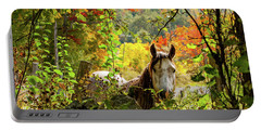 Portable Battery Charger featuring the photograph Are You My Friend? by Jeff Folger