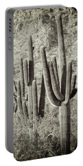 Arizona Desert 2 Portable Battery Charger