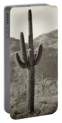 Arizona Desert Portable Battery Charger