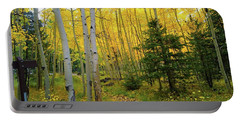 Portable Battery Charger featuring the photograph Arizona Fall by Broderick Delaney