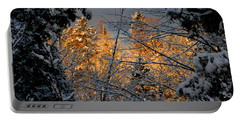 Portable Battery Charger featuring the photograph Arrival by Elfriede Fulda