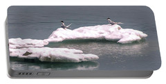 Arctic Terns On A Bergy Bit Portable Battery Charger