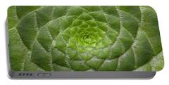 Artistic Nature Green Aeonium Cactus Macro Photo 203 Portable Battery Charger