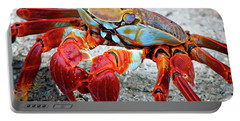 Artistic Nature Red And Blue Rainbow Crab 908 Portable Battery Charger