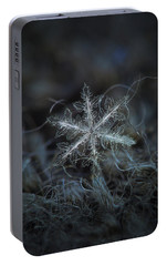 Portable Battery Charger featuring the photograph Leaves Of Ice by Alexey Kljatov
