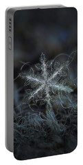 Leaves Of Ice Portable Battery Charger