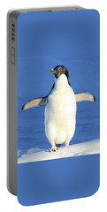 Cold Feet - Penquin In The Snow Portable Battery Charger