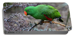Green Male Eclectus Parrot Portable Battery Charger