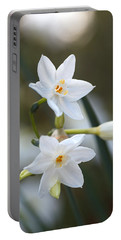 Paperwhite Flowering Bulbs Portable Battery Charger