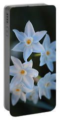 Winter Glow Of Paperwhite Flowers Portable Battery Charger