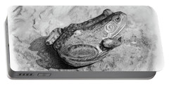 Frog On Rock Portable Battery Charger
